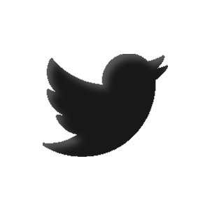 Twitter - Seattle Web Design